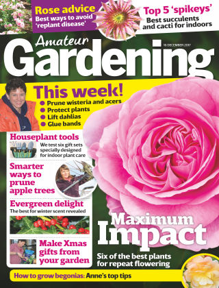 Amateur Gardening 16th December 2017