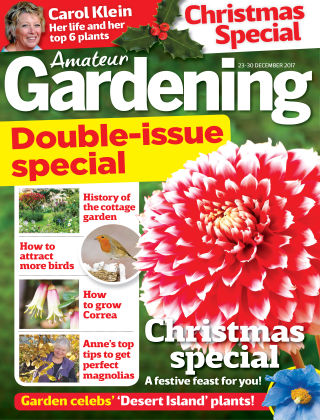 Amateur Gardening 26th December 2017