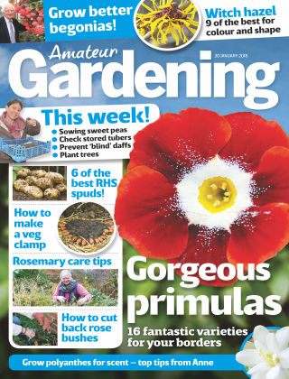 Amateur Gardening 20th January 2018