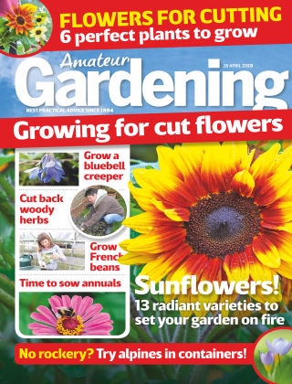Amateur Gardening 28th April 2018