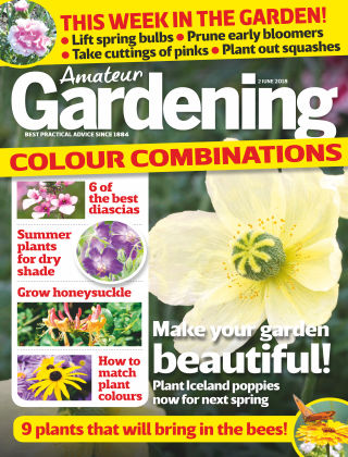 Amateur Gardening 2nd June 2018
