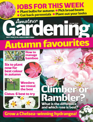 Amateur Gardening 30th June 2018