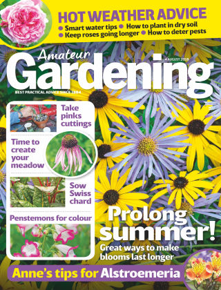 Amateur Gardening 4th August 2018