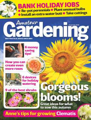 Amateur Gardening 25th August 2018
