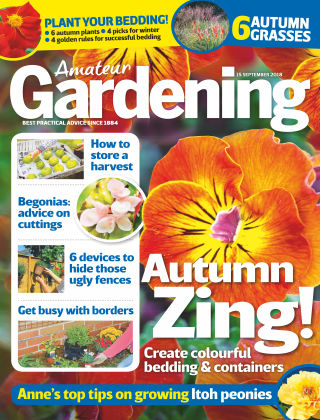 Amateur Gardening 15th September 2018