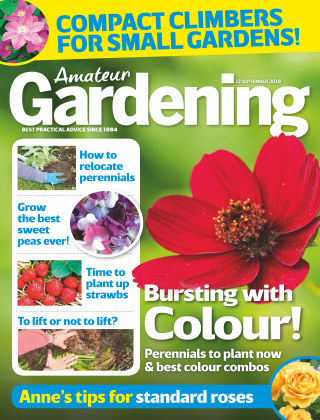 Amateur Gardening 22nd September 2018