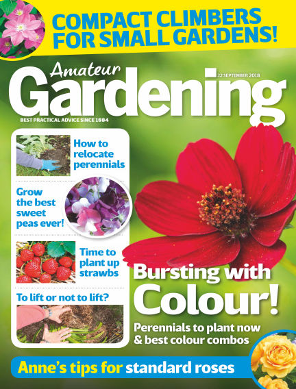 Amateur Gardening September 18, 2018 00:00