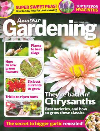 Amateur Gardening 29th September 2018