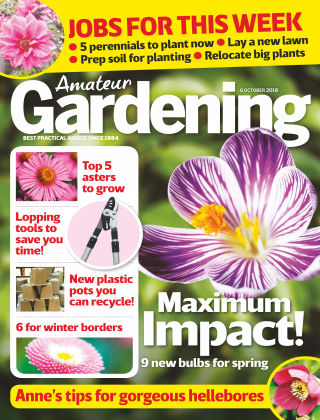 Amateur Gardening 6th October 2018