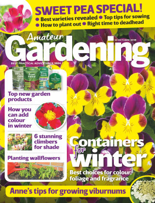 Amateur Gardening 20th October 2018