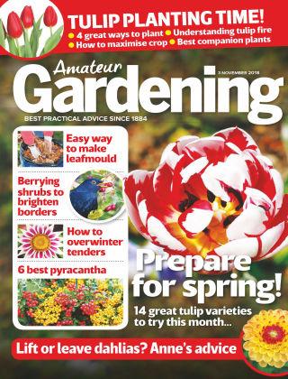 Amateur Gardening Nov 3 2018