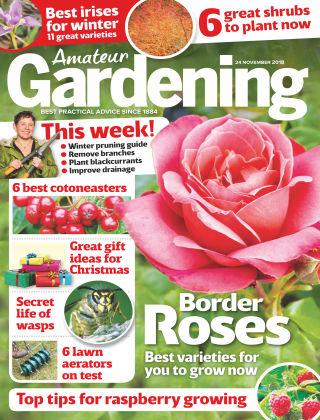 Amateur Gardening Nov 24 2018