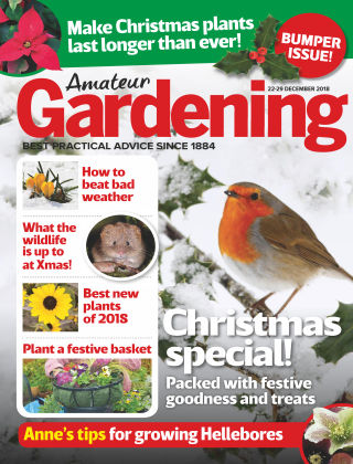 Amateur Gardening Dec 22 2018