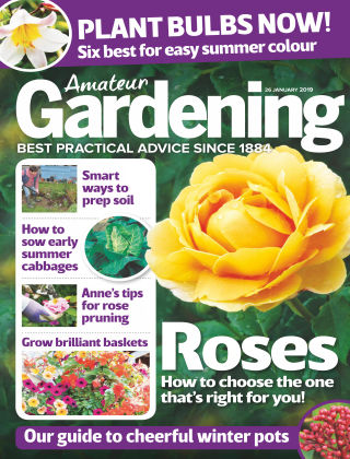 Amateur Gardening Jan 26 2019