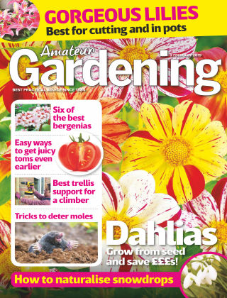 Amateur Gardening Feb 2 2019