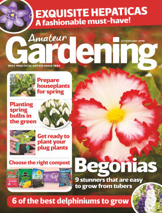 Amateur Gardening Feb 23 2019