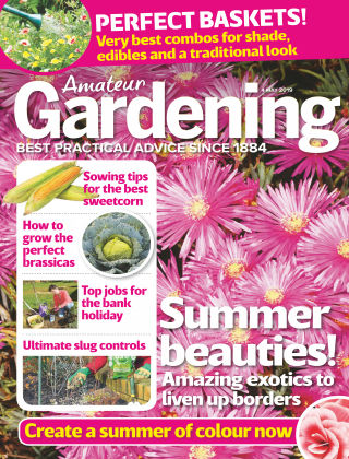 Amateur Gardening May 4 2019