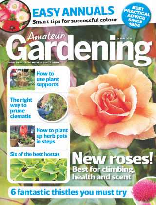 Amateur Gardening May 25 2019