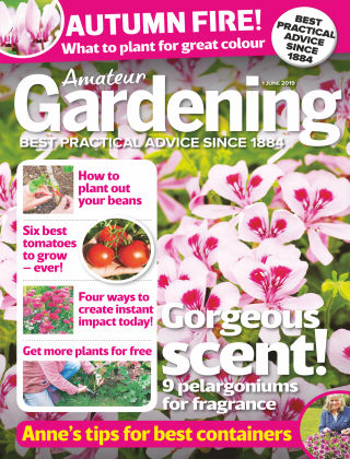 Amateur Gardening Jun 1 2019