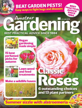 Amateur Gardening Jun 29 2019