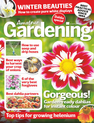 Amateur Gardening Jul 6 2019