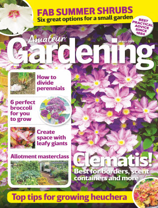 Amateur Gardening Jul 20 2019