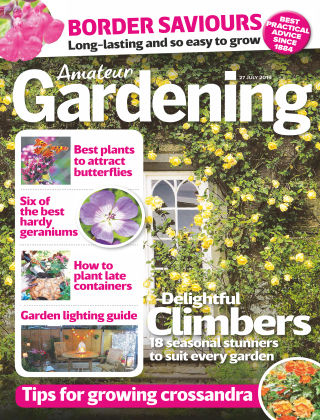 Amateur Gardening Jul 27 2019