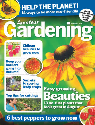 Amateur Gardening Aug 3 2019