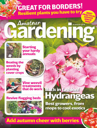 Amateur Gardening Aug 10 2019