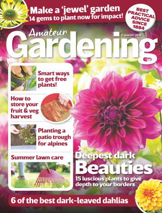 Amateur Gardening Aug 17 2019