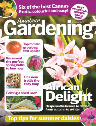 Amateur Gardening Aug 31 2019