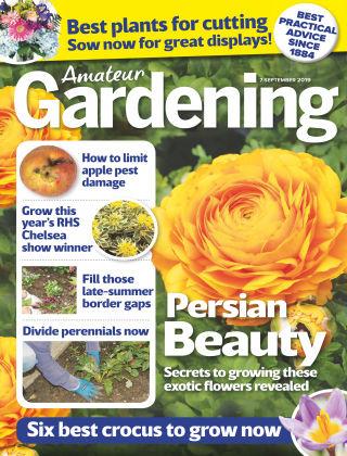 Amateur Gardening Sep 7 2019