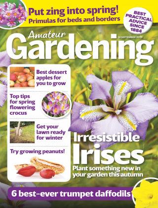 Amateur Gardening Sep 14 2019