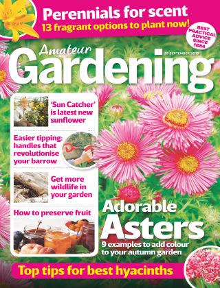 Amateur Gardening Sep 28 2019