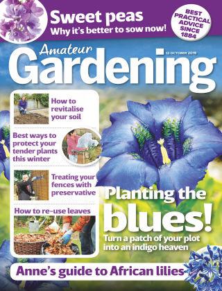 Amateur Gardening Oct 12 2019