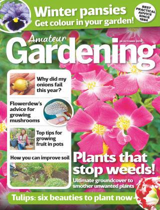 Amateur Gardening Oct 26 2019