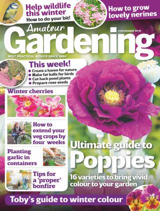 Amateur Gardening Nov 9 2019