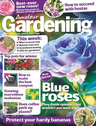 Amateur Gardening Nov 23 2019