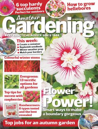 Amateur Gardening Nov 30 2019