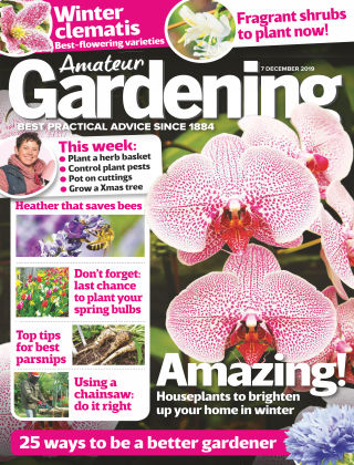 Amateur Gardening Dec 7 2019