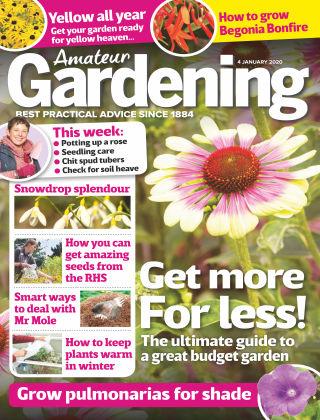 Amateur Gardening Jan 4 2020