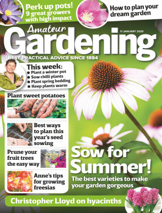 Amateur Gardening Jan 11 2020