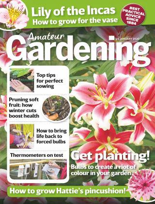 Amateur Gardening Jan 25 2020