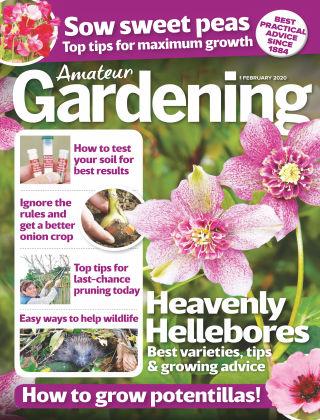 Amateur Gardening Feb 1 2020