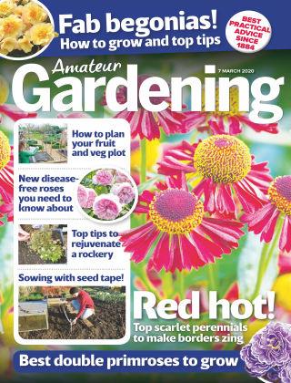 Amateur Gardening Mar 7 2020