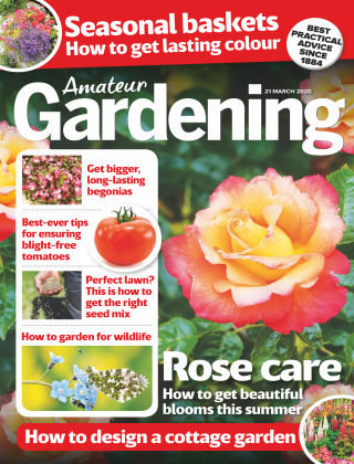 Amateur Gardening Mar 21 2020