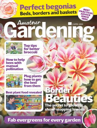Amateur Gardening Apr 4 2020