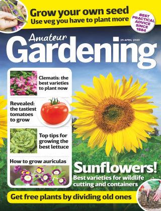 Amateur Gardening Apr 25 2020