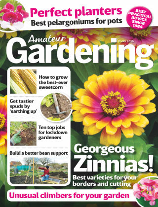 Amateur Gardening May 2 2020