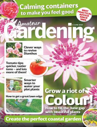 Amateur Gardening 6th June 2020